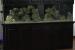700-Gallon-Aquarium-Top-Shelf-Aquatics-689×1024