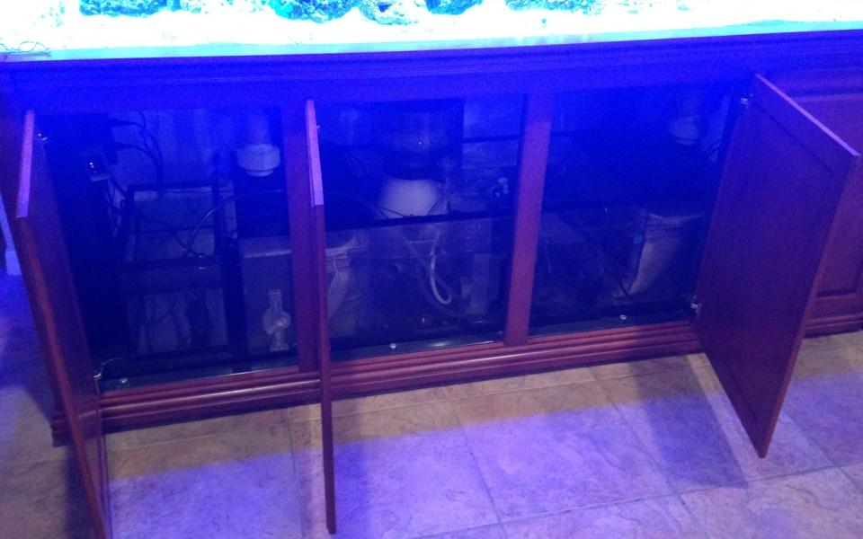 Custom-Aquarium-in-Orlando-FL.