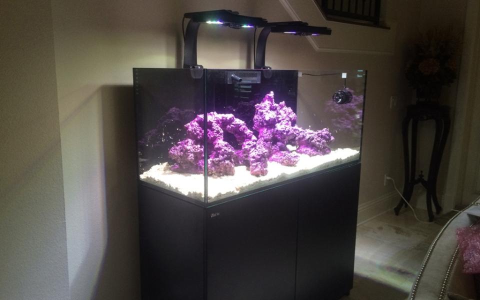 Red-Sea-Reefer-Custom-Aquarium-Set-Ups.-1024×768