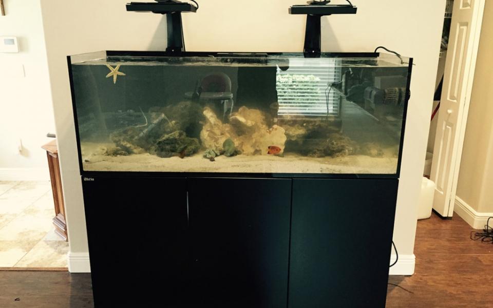 Red-Sea-Reefer-Custom-Aquarium-Set-Ups..-1024×768