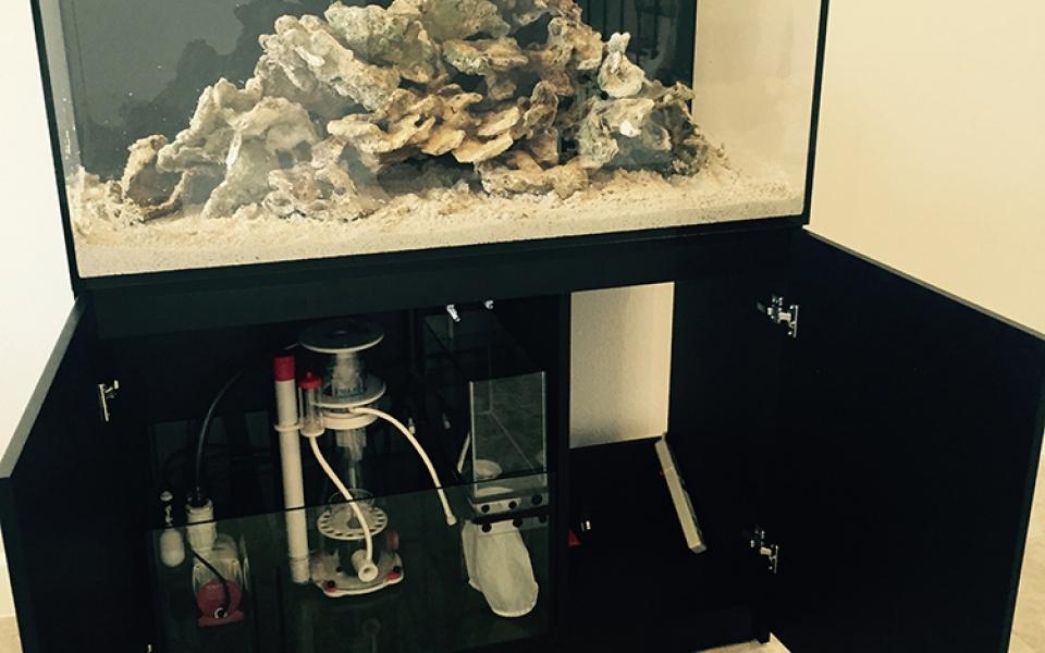 Red-Sea-Reefer-Tank-Top-Shelf-Aquatics