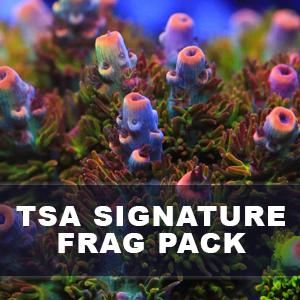 TSA SIGNATURE SPS FRAG PACK